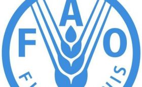 3rd. session of the FAO working group for aquatic genetic resources